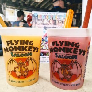 flying monkeys souvenir cups with frozen drinks and floaters